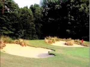 Naturalizacion de campos de golf